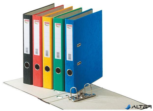 """Iratrendező, 50 mm, A4, karton, ESSELTE """"Rainbow"""", zöld"""